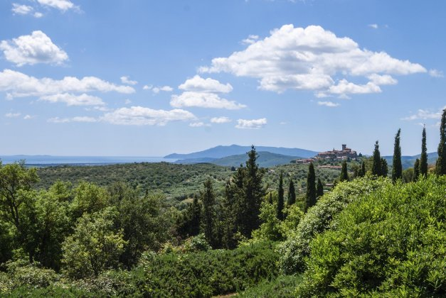 Photo n°163597 : luxury villa rental, Italy, TOSCOT 2023