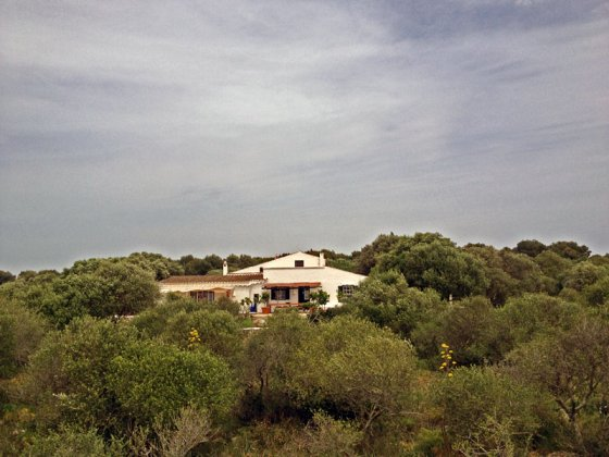 Photo n°59165 : luxury villa rental, Spain, ESPMIN 733