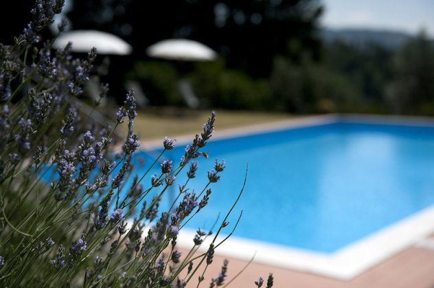 luxury villa rental, Italy, TOSTOS 721
