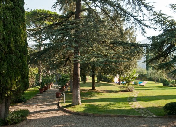 Photo n°114891 : luxury villa rental, Italy, TOSCHI 1067