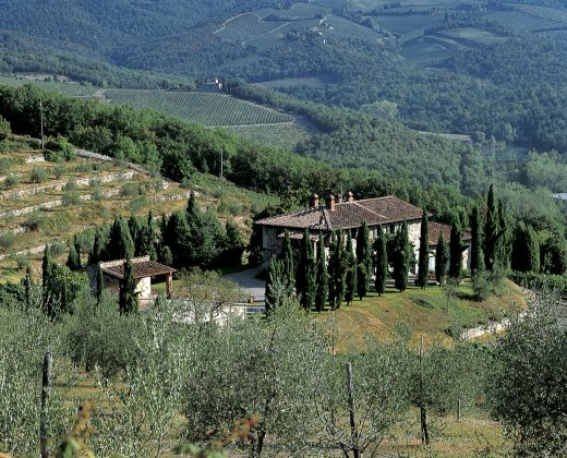 Photo n°81979 : location villa luxe, Italie, TOSCHI 1071