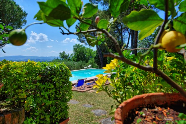 Photo n°126153 : location villa luxe, Italie, TOSCHI 912