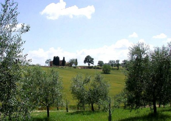 Photo n°91764 : location villa luxe, Italie, TOSSIE 7013